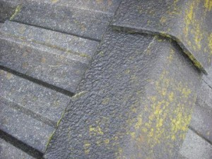Roofing Methods for Controlling Algae and Moss
