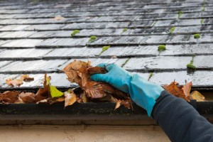 best-gutter-cleaning-services-in-Dallas-texas